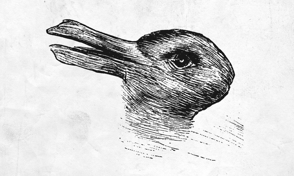 image of a duck or rabbit depending how you look at it