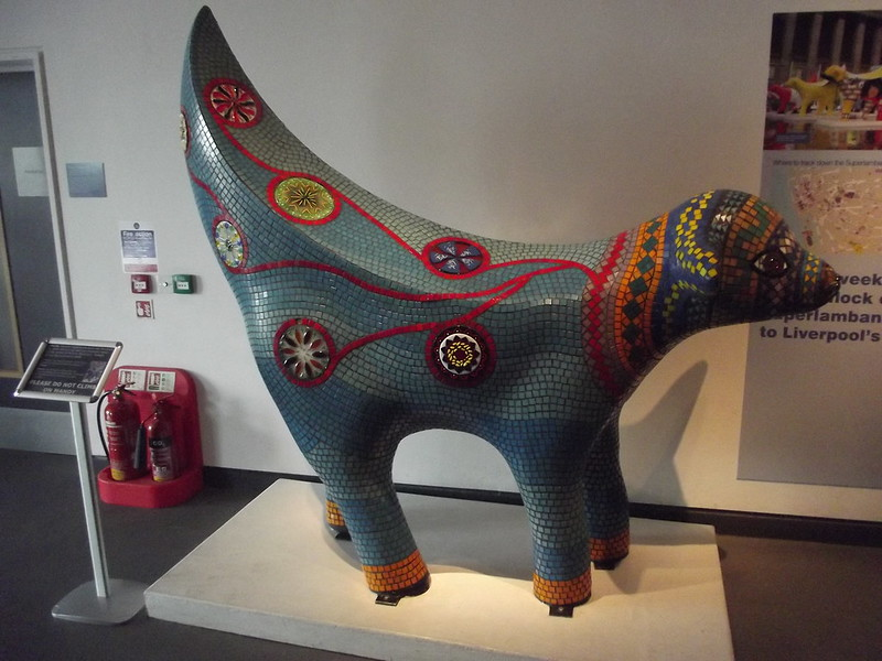 Image of a super lamb banana from Liverpool Museums